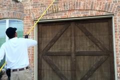 Cobweb and Wasp removal